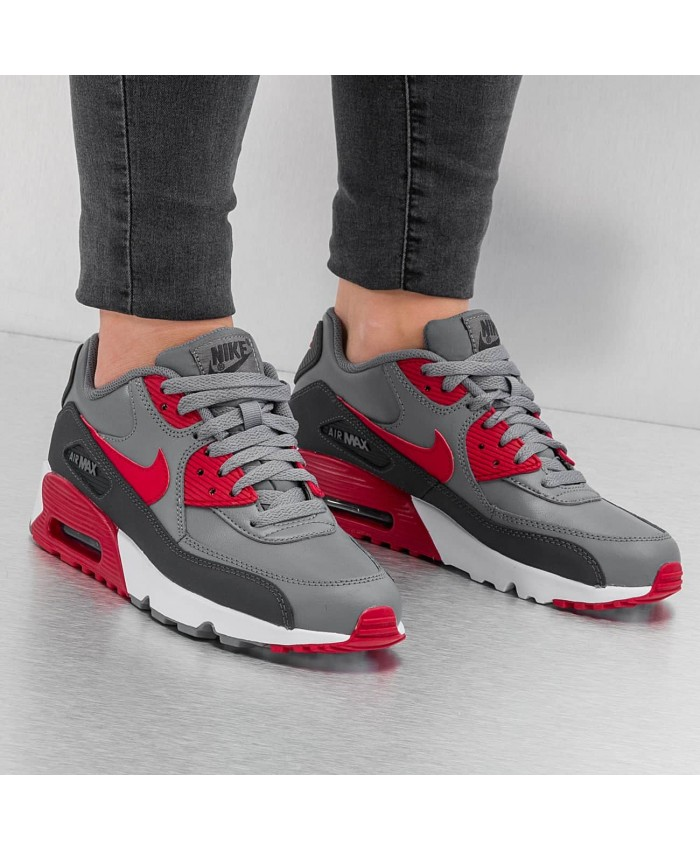 Femme Nike Air Max 90 Leather Premium Gris Red